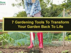 7 Gardening Tools To Transform Your Garden Back To Life